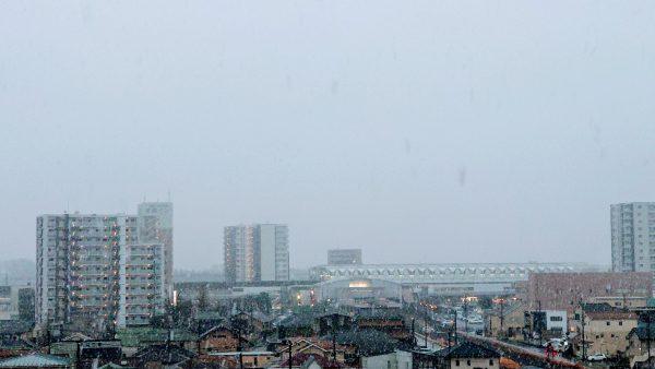 茨城県守谷市で雪が降りました。